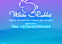 Курсы White Rabbit Minsk